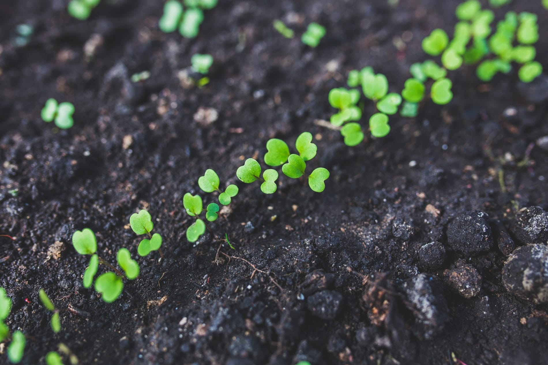 How to Grow Your Medical Practice